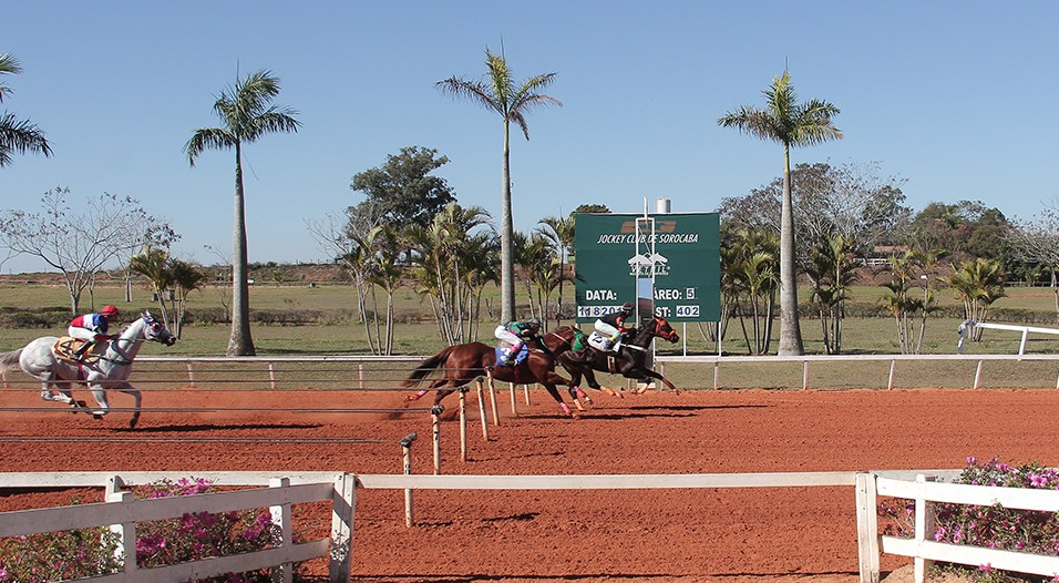 Over The Moon vence o GP Pres. do Jockey Club de Sorocaba e bate recorde nos 402 metros